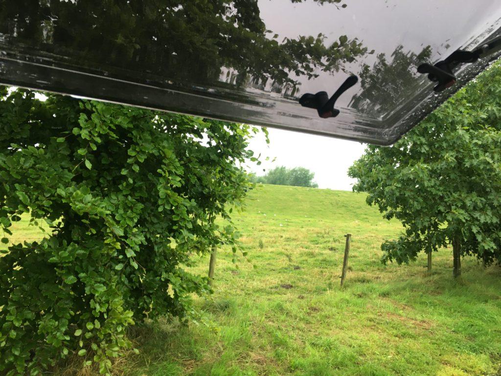Sommervertretung in Schleswig-Holstein: Eine Entdeckung 2