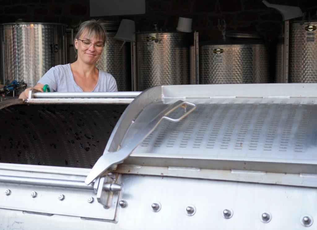 Der Breisgau, köstlicher Wein im Sonnenschein 4
