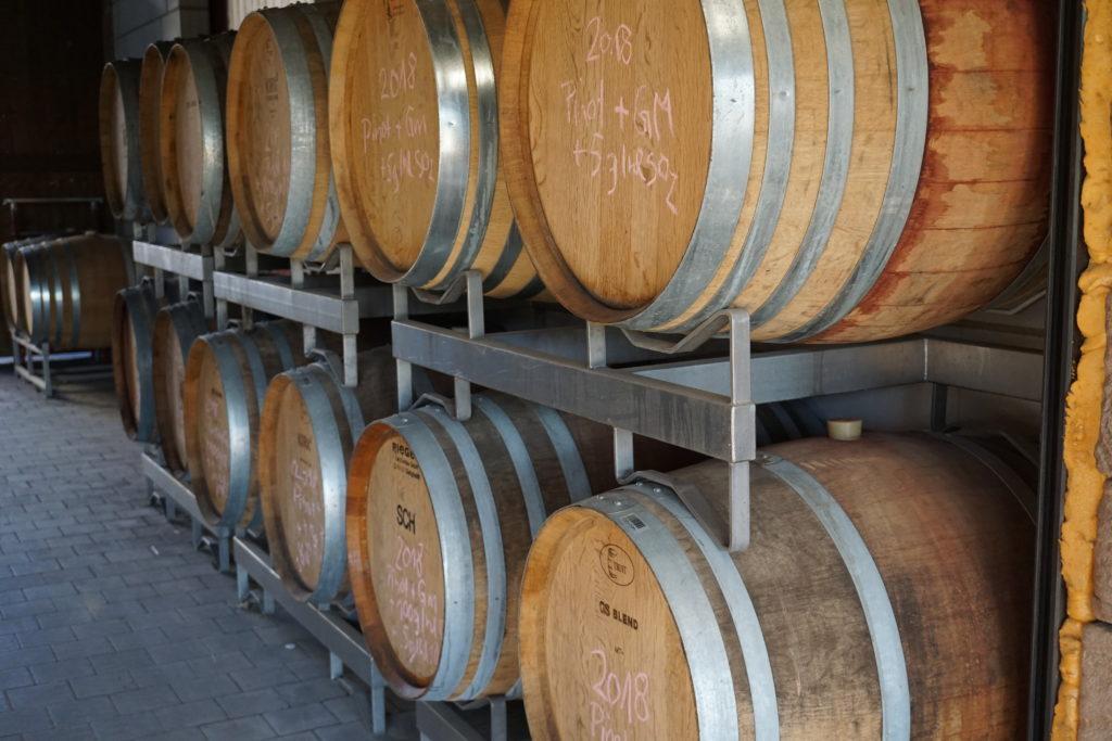 Der Breisgau, köstlicher Wein im Sonnenschein 7
