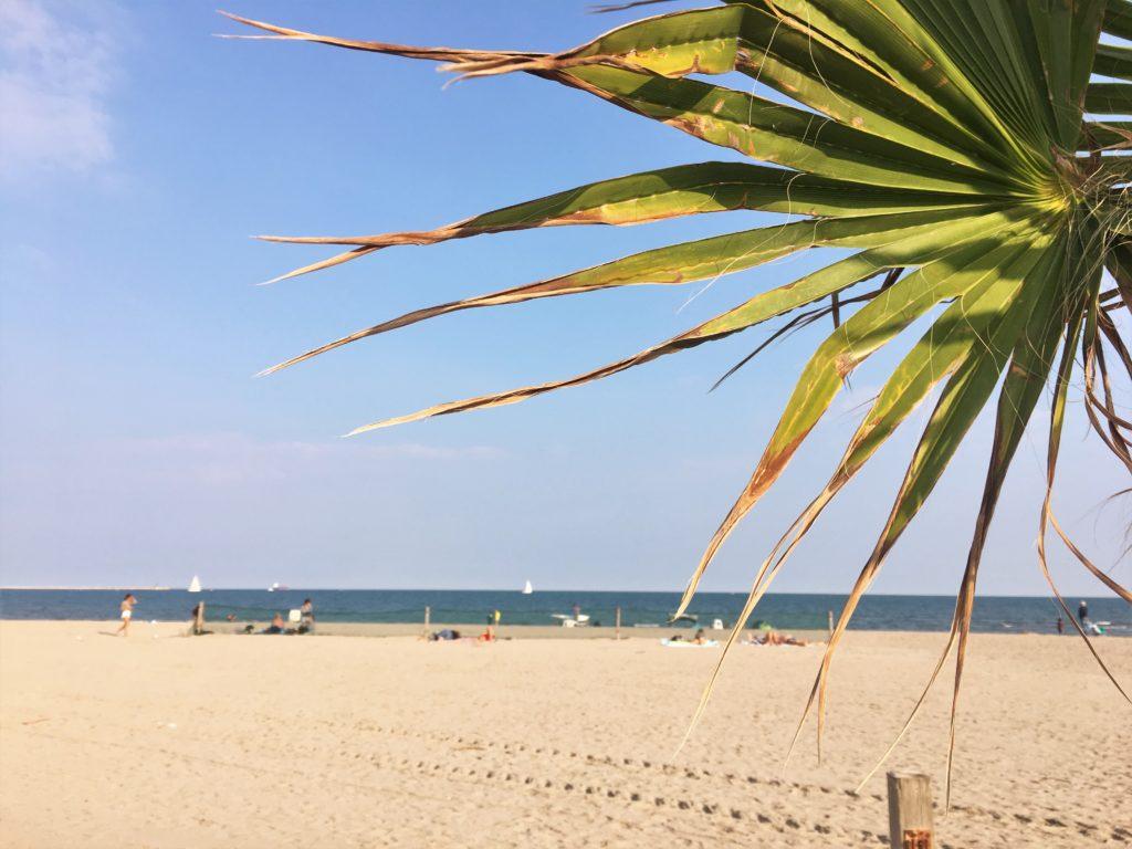 Endlich am Meer: Adria und Chioggia 3