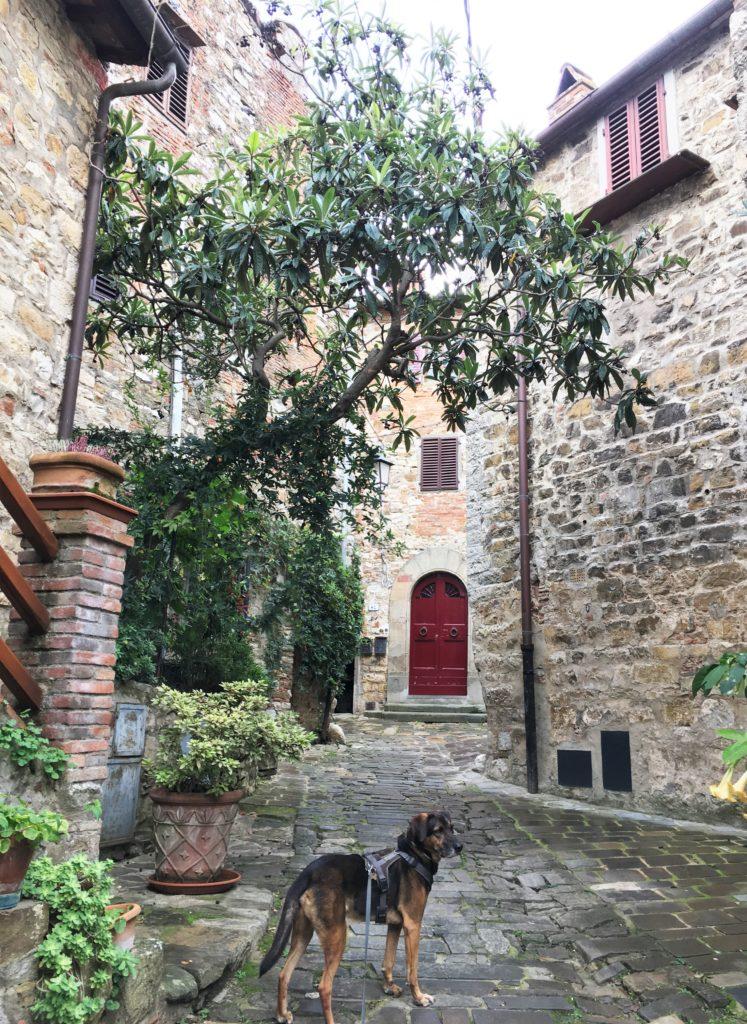 Schock in Greve di Chianti und eine Nacht vor der Festung 11