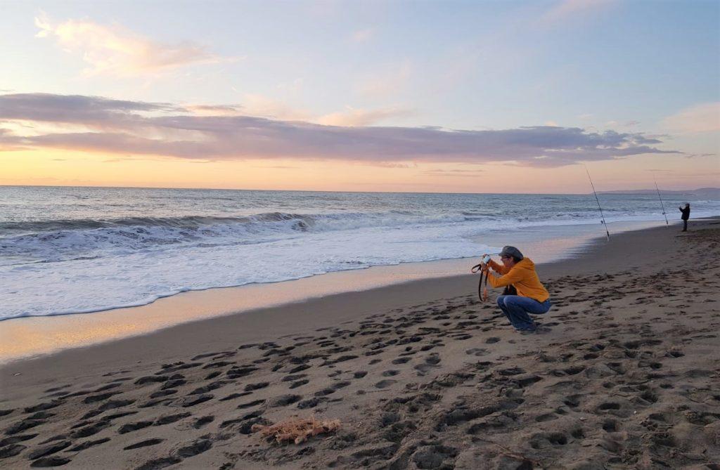 Zurück ans Meer und das Gasflaschen-Abenteuer : Von Vada nach Bibbona 16