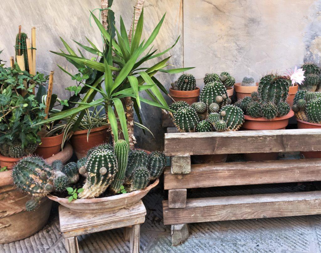 Nach Westen nach Lari und Sant'Ermo: Treffen mit Kristina 3