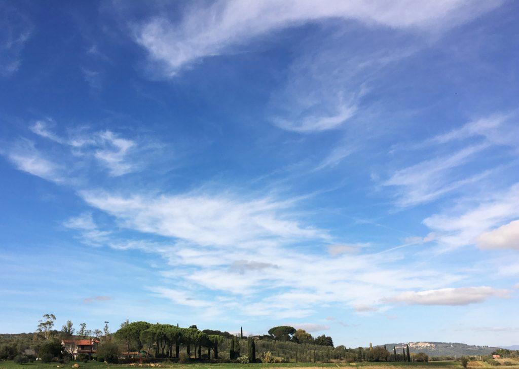 Rat, Ruhe und Rebensaft: Gastfreundschaft in der Maremma 7