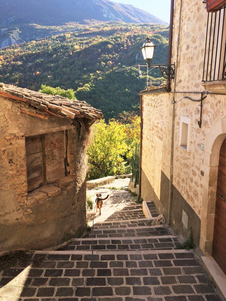 Warten auf das Fenster und Flucht in den Süden: Von der Maremma nach Apulien 15