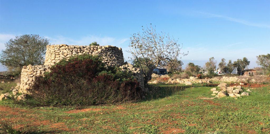 Anker werfen im Olivenhain: Die Entdeckung des Salento 9
